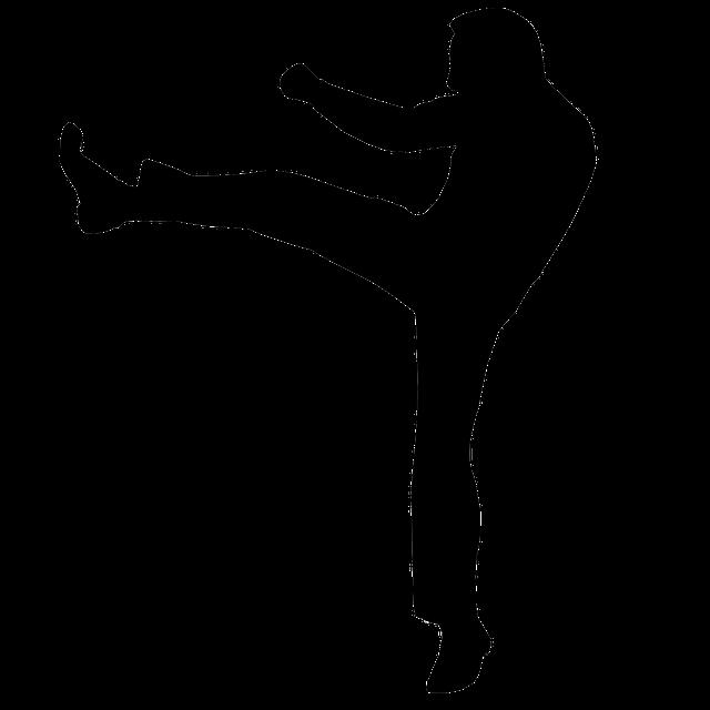 SEM Kick man - kickbox
