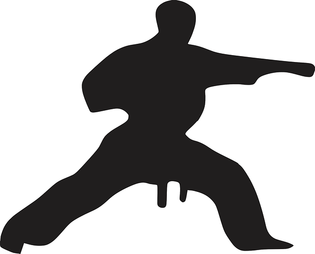 SEO Punch Man- karate